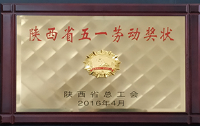 2016 - 2017年度先进单位